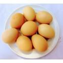 Free range eggs (dozen)